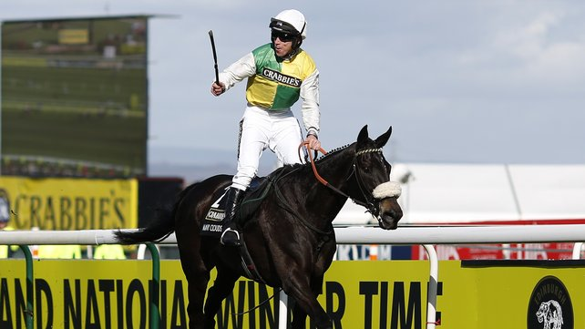 25-1 Many Clouds was this year's winner in the Crabbies Grand National at Aintree image: rte.ie