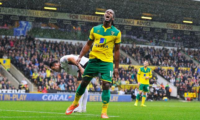 Cameron Jerome scored 18 league goals for the Canaries last season image: theguardian.com