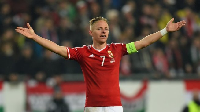 Balazs Dzsudzsak was Hungary's player of the year in 2010 image: rte.ie